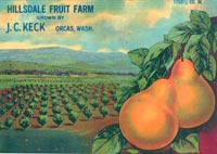 Hillsdale Farm Fruit Label - photo courtesy Orcas Island Historical Museum